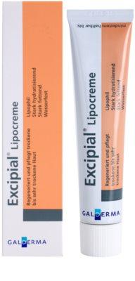 Excipial Lipocreme krem regenerujący do skóry suchej i bardzo suchej 1