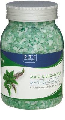 EZO Mint & Eucalyptus sais de magnésio para banho relaxante das vias respiratórias