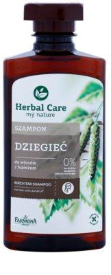 Farmona Herbal Care Birch Tar šampon proti prhljaju