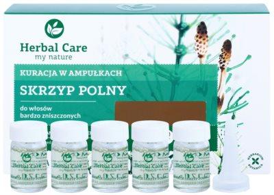 Farmona Herbal Care Horsetail інтенсивний догляд для дуже пошкодженого волосся