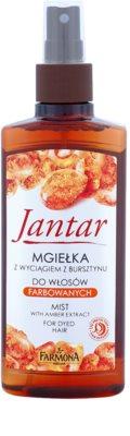 Farmona Jantar захисний мус для фарбованого волосся
