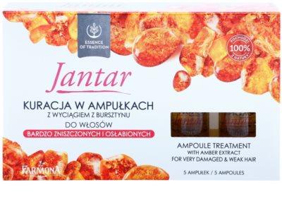 Farmona Jantar intensywna kuracja do bardzo zniszczonych włosów 2