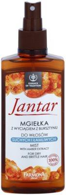 Farmona Jantar spray regenerador para cabello seco y delicado 1