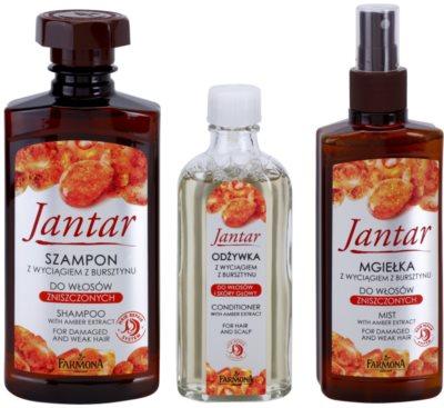 Farmona Jantar set cosmetice I. 1