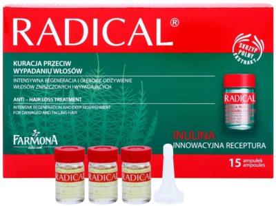 Farmona Radical Hair Loss ingrijire impotriva caderii parului
