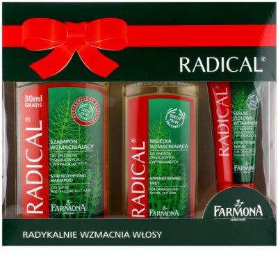 Farmona Radical Hair Loss set cosmetice I.