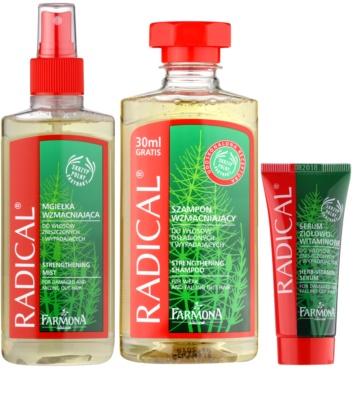 Farmona Radical Hair Loss zestaw kosmetyków I. 1