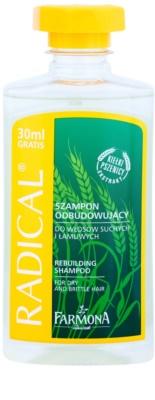 Farmona Radical Dry & Brittle Hair hajszerkezet javító sampon