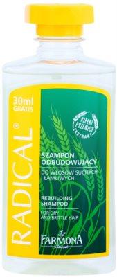 Farmona Radical Dry & Brittle Hair șampon pentru a restabili structura părului