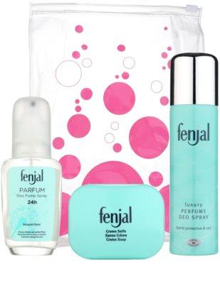 Fenjal Classic подарунковий набір