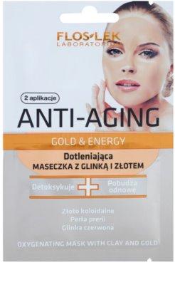 FlosLek Laboratorium Anti-Aging Gold & Energy Anti-Oxidantienmaske mit gold und Tonerde