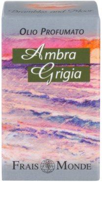 Frais Monde Amber Gris parfémovaný olej pro ženy 3