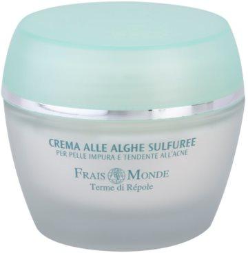 Frais Monde Terme di Répole Purifying crema pentru ten  pentru tenul gras, predispus la acnee