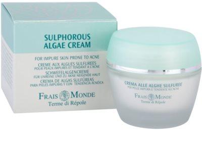 Frais Monde Terme di Répole Purifying bőrkrém az aknéra hajlamos zsíros bőrre 2