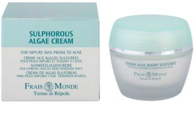 Frais Monde Terme di Répole Purifying bőrkrém az aknéra hajlamos zsíros bőrre 3