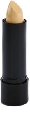 Freedom Pro Conceal Stick corretor sólido