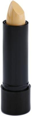 Freedom Pro Conceal Stick коректор у формы стіку