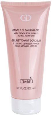 GA-DE Cleansers and Toners gel de curatare bland pentru ten normal spre uscat