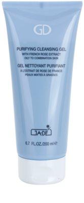 GA-DE Cleansers and Toners gel limpiador para pieles mixtas y grasas