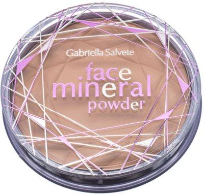 Gabriella Salvete Mineral Powder mineralni puder