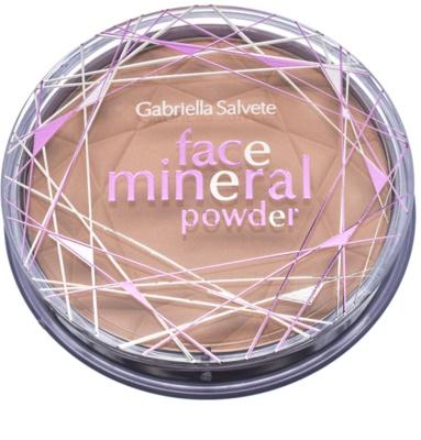 Gabriella Salvete Mineral Powder minerální pudr