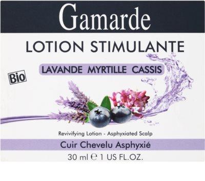 Gamarde Hair Care ser fiole pentru par neted si stralucitor 3