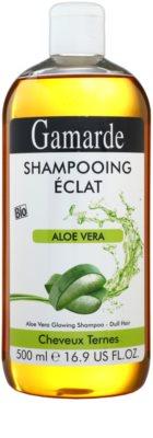 Gamarde Hair Care шампунь для блиску та шовковистості волосся