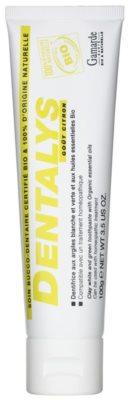 Gamarde Hygiene Dentalys зубна паста з глиною та натуральними ефірними оліями