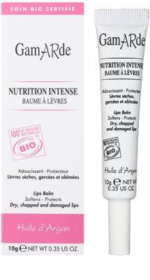 Gamarde Nutrition Intense balsam do suchych i popękanych ust 1