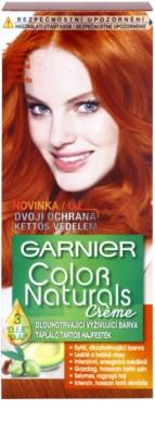 Garnier Color Naturals Creme barva na vlasy