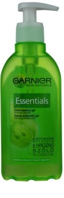 Garnier Essentials tisztító habzó gél normál és kombinált bőrre