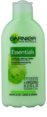 Garnier Essentials lapte demachiant pentru piele normala si mixta