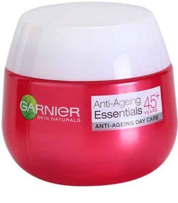 Garnier Essentials denní protivráskový krém 45+