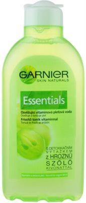 Garnier Essentials woda tonizująca do cery normalnej i mieszanej