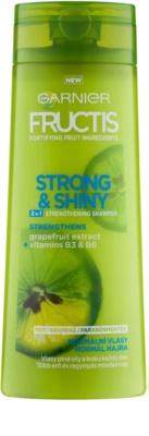 Garnier Fructis Strong & Shiny 2in1 champú revitalizador para cabello normal