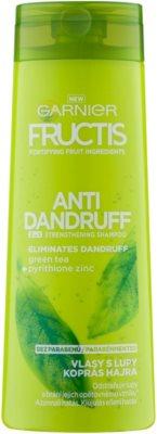 Garnier Fructis Antidandruff 2in1 šampon proti prhljaju za normalne lase