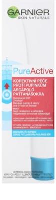 Garnier Pure Active korektivní péče proti pupínkům 2