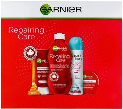 Garnier Repairing Care косметичний набір I.