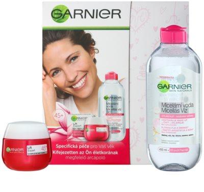 Garnier Skin Cleansing kosmetická sada I. 2