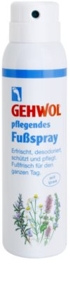 Gehwol Classic ošetrujúci dezodorant na nohy