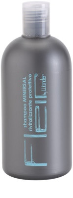 Gestil Fleir by Wonder champú mineral para todo tipo de cabello