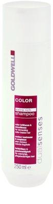 Goldwell Dualsenses Color Extra Rich champú para cabello teñido