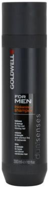 Goldwell Dualsenses For Men šampon pro jemné a zplihlé vlasy