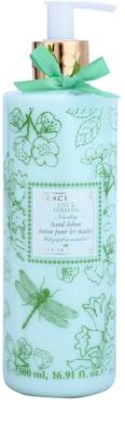Grace Cole Floral Collection Lily & Verbena Milch für die Hände