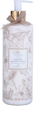 Grace Cole Floral Collection Magnolia & Vanilla tej kézre
