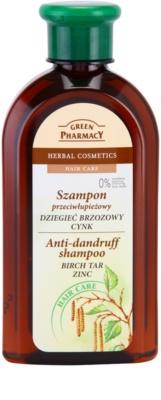 Green Pharmacy Hair Care Birch Tar & Zinc champô anticaspa