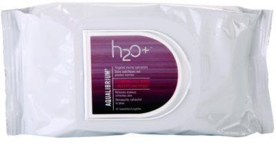 H2O Plus Aqualibrium toalhitas de limpeza