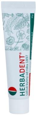 Herbadent Parodontol gyógynövényes gél az ínyre