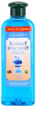 Herbavera Body Wash Care gel de ducha refrescante de castaño de Indias