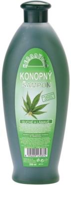 Herbavera Hair šampon za suhe in krhke lase
